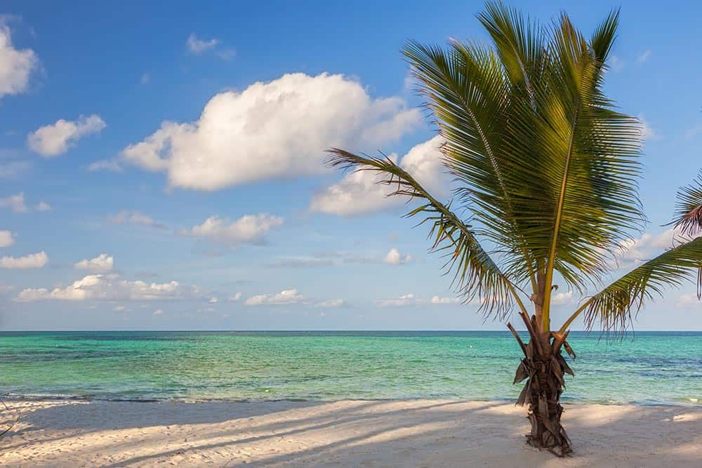 Zanzibar, Tanzania Destination Guide 4