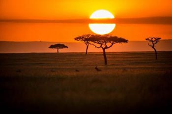 Top Tips for Travel in Africa