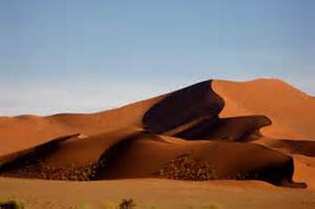 In a Desert Land: Namibia