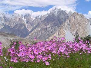Pakistan's Karakoram Mountains. photo by David Rich.