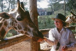 FeedingGiraffes(small)