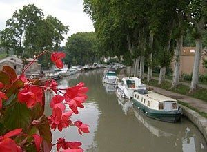 Flowers along the Canal du Midi, in southern France. Kent St. John photo.