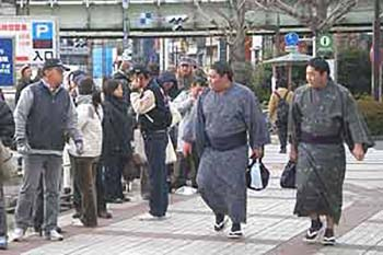 Japan: A Beginner's Guide to Sumo Wrestling Rules