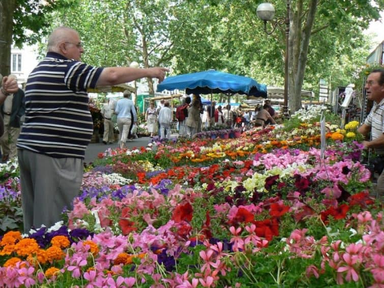 A flower vendor at the market in Tours, Centre Loire, France. Max Hartshorne photos.