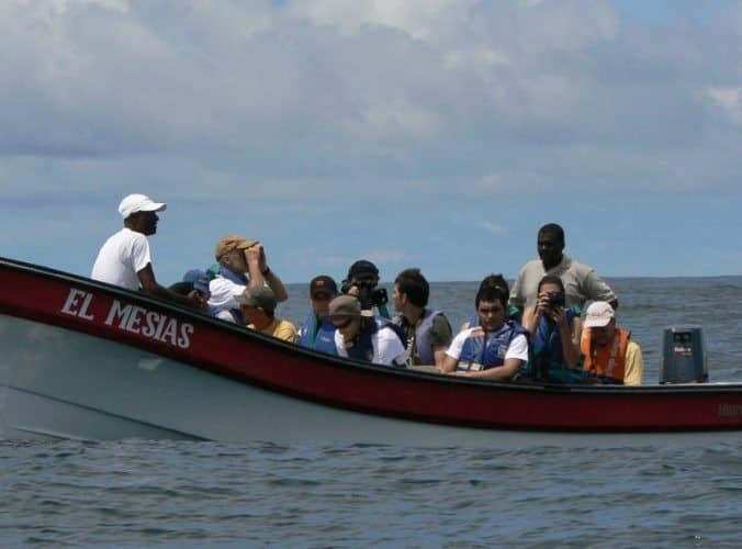 Dugout canoes are used by locals, and whale watching happens in 20 foot long speedboats. There are lots of whales to see here!