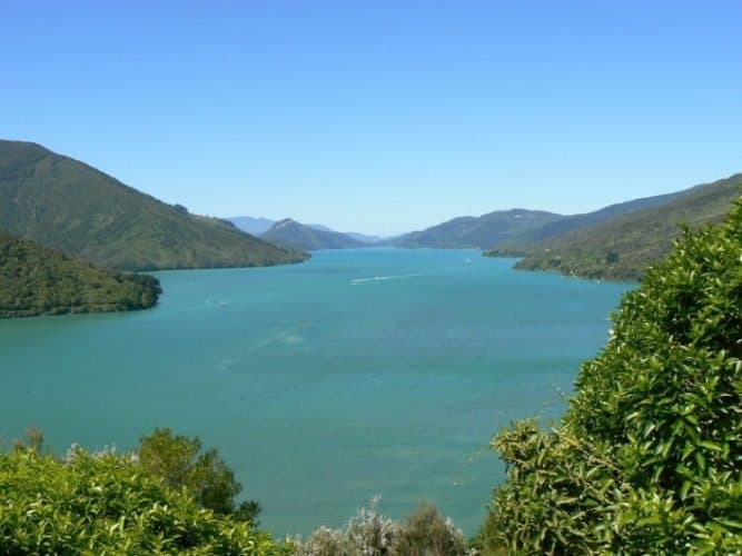 Scenic Queen Charlotte Sound, on the road toward Nelson, New Zealand. Max Hartshorne photos.