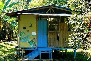 A Locavore in Costa Rica: Living the Dream