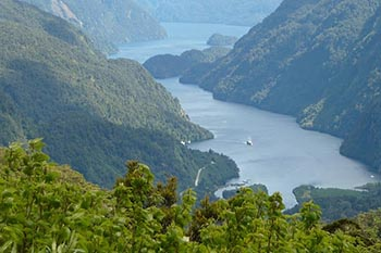 Cruising New Zealand's Doubtful Sound