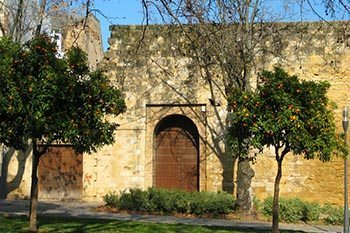 Cordoba: A Center of Culture and Learning Through the Centuries