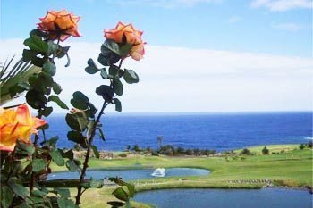 Tenerife, The Largest of the Canary Islands