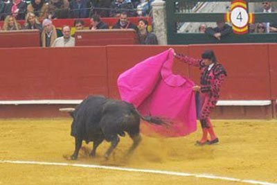 Before the deaths of the bulls in Valencia.