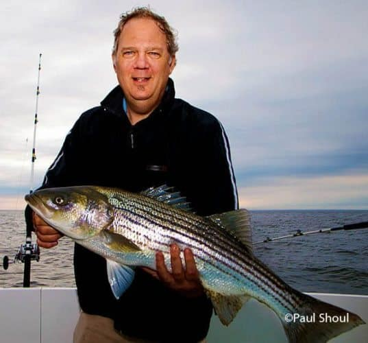 Striped bass is the prize for every angler fishing in Rhode Island. Paul Shoul photo.