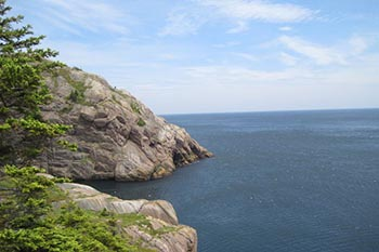 Rediscovering Newfoundland and the East Coast Trail