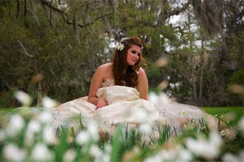 Searching for Faeries: A Magical Journey of Self Discovery