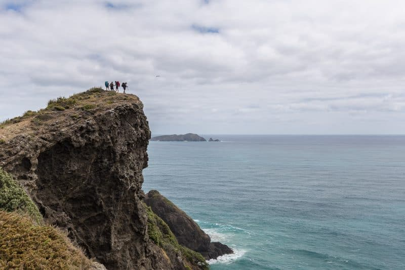 A captivating view from the Te Araroa trail, that goes the length of the two New Zealand islands.  Hiking is another way to get around for free. thesummitregister.com photo.