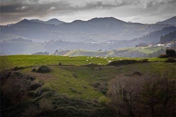 San Sebastian's Basque Culinary Traditions