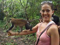 A monkey in Ghana.