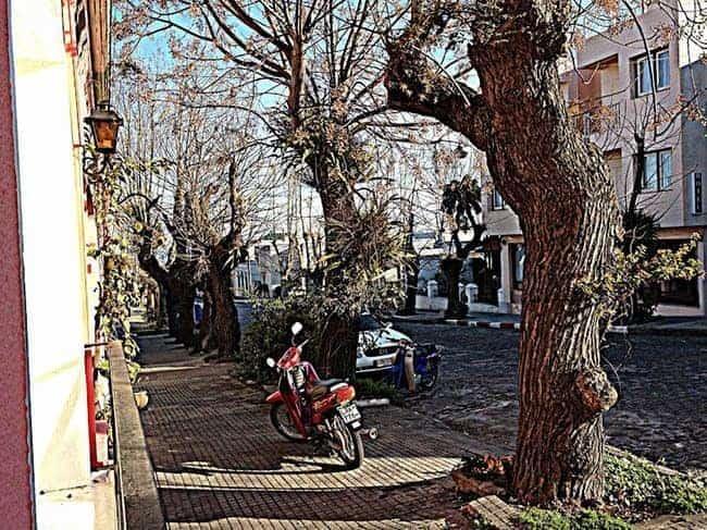 Barrio scene in Colonia del Sacramento, Uruguay. photos by Caitlin McAllister