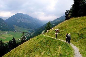 Hiking to Sucka in Steg, Liechtenstein