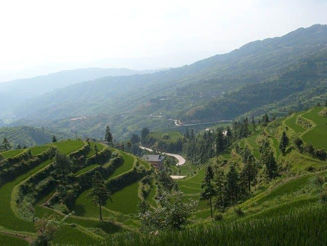 tiantang-view