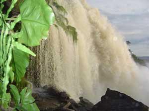 venezuela-falls2