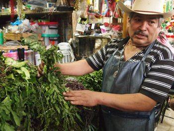 Medicinal herb seller in San Angel mercado.