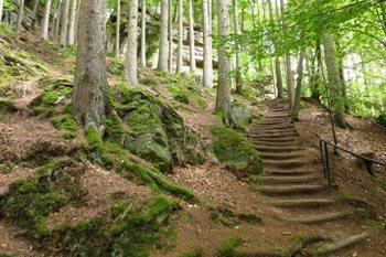 Hiking in Luxembourg