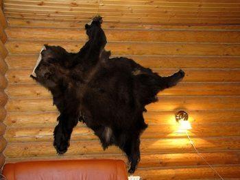 bear-on-wall in Russian Banya.