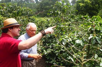 Walking the path through the coffee trees in Hacienda Combia. Paul Shoul photo.