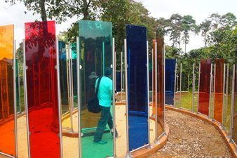 These plexiglass panels are designed to show the different colors you can see when you look at the coffee trees, at Hacienda Combia. Paul Shoul photo.