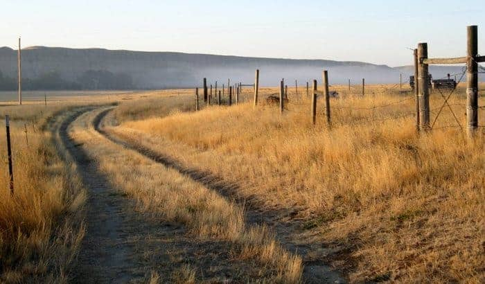 A country lane in Virgelle, Montana. photos by Laurie Gough.