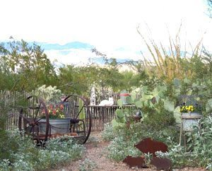 The Desert Dove Bed and Breakfast in Arizona