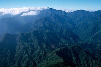Jamaicas Blue Mountains: a serious hike!
