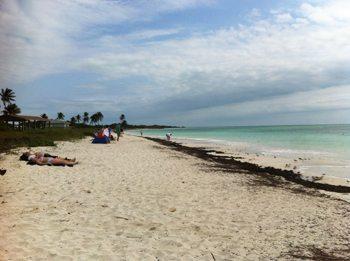 The pretty and deserted beach at Bahiahonda, Florida.