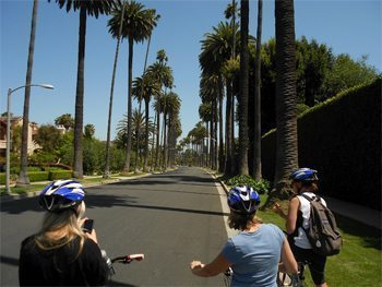 Biking through the posh neighborhoods of Beverly Hills, California. photos by Malea Ritz.