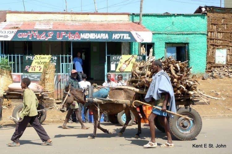 Horsecart in Lalibela Ethiopia.