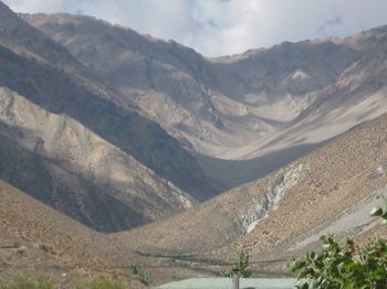 Helping Out in the Elqui Valley, Chile