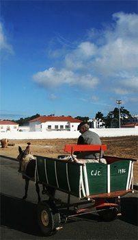 Donkey cart plies the roadway in Vila Nova de Milfontes, Portugal. photos by Luke Gribble.