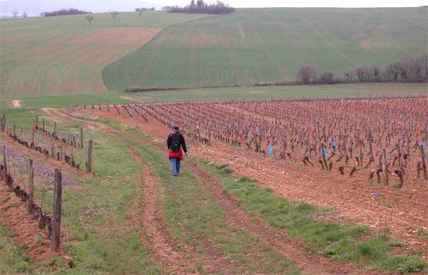 David Downie on his journey through rural France.
