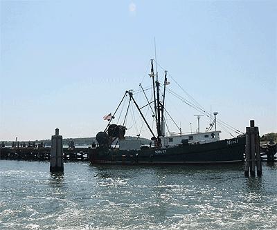 fishing boat off Montauk, LI.