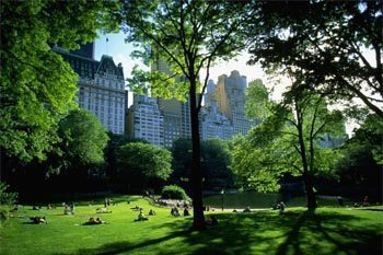 Great Hikes Around New York City: Travel Book Excerpt