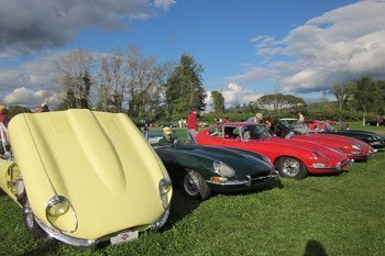 A lineup of Jaguars at the British Invasion