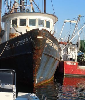 Fishing boats at Menemsha's Dutcher's Dock. photo by Mary Gilman.