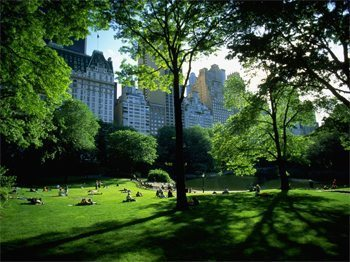 New York's Central Park...hike it end to end!
