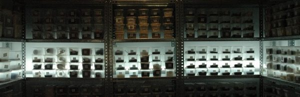 More than 1600 fresh spices are stored in this cooler at Arzak.