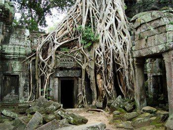 ruins in Ta Promh, Cambodia. photos by John H. Rydzewski.
