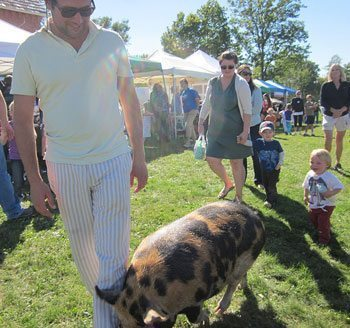 Local gentleman with his pig, Mauve on the Shoreham Green.
