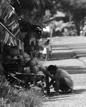 A woman sells watermelons along a highway in Zarraga. At the height of watermelon season, prices can drop as low as 10 pesos ($.20USD) per kilo.