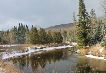 A stream in winter.