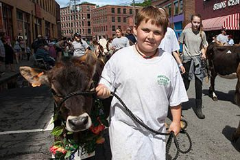 The Strolling of the Heifers--Slideshow